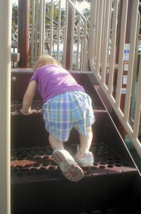 Cor climbing steps 3
